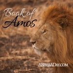 The book of Amos in the Bible